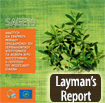 laymans report icon el